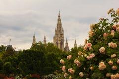 Campanile della cattedrale del ` s di St Stephen, Vienna fotografia stock libera da diritti