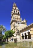 Campanile della moschea e della cattedrale di Cordova e stagno della fontana sulla priorità alta Fotografia Stock Libera da Diritti