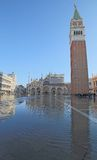 Campanile di St Mark a Venezia con l'alta marea Fotografia Stock