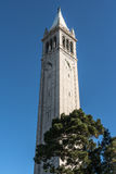 Campanilen i Berkeley, Kalifornien Arkivfoton