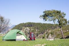 Campant au milieu des bois, tir de l'intérieur de la tente Image stock