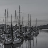 Campbell River Marina images stock