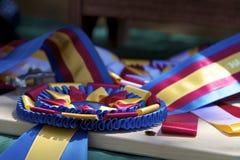 Campeão Fotografia de Stock Royalty Free