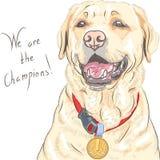 Campeão de labrador retriever da raça do cão do vetor Fotografia de Stock Royalty Free