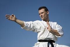 Campeão do mundo do karaté - kata imagens de stock