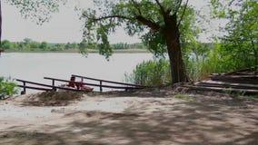 Campe da costa do lago que comping video estoque