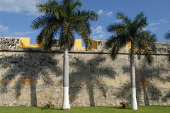 Campeche. Palm trees cast their shadows over the old city walls of Campeche, Mexico Royalty Free Stock Photo