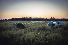 Campeggio con le tende di campeggio sul campo di estate e sul cielo rurali di tramonto durante le vacanze in campeggio Fotografie Stock