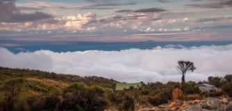 Campeggio di Kilimanjaro all'alba Immagine Stock Libera da Diritti