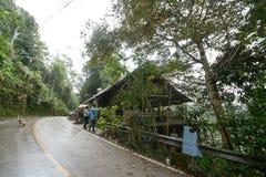 Campeggio e tenda di alloggio presso famiglie a Doi Luang Chiang Dao, Tailandia Fotografia Stock Libera da Diritti