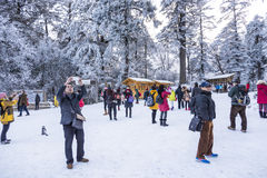 1 campeggio in Hailuogou Fotografie Stock Libere da Diritti