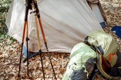 Campeggio nella foresta immagine stock libera da diritti