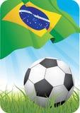 Campeonato 2010 do futebol do mundo - Brasil Foto de Stock