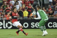 Campeonato brasileiro 2017 Foto de Stock