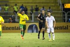 Campeonato brasileiro Imagens de Stock Royalty Free