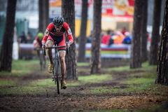 Campeonato Cyclocross - Heusden-Zolder, Bélgica del mundo de UCI fotos de archivo