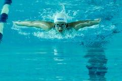 Campeonato da natação Imagens de Stock Royalty Free