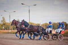 Campeonato da 'troikca' do russo de Rússia Fotografia de Stock Royalty Free