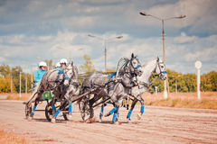 Campeonato da 'troikca' do russo de Rússia Imagens de Stock Royalty Free
