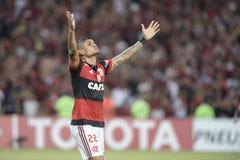 Campeonato de Libertadores Fotografia de Stock Royalty Free