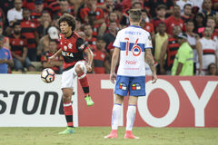 Campeonato de Libertadores Foto de Stock