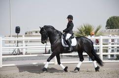 Campeonato de salto do cavalo Imagem de Stock Royalty Free