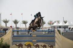Campeonato de salto do cavalo Fotos de Stock