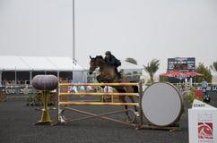 Campeonato de salto do cavalo Fotografia de Stock Royalty Free