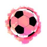 Campeonato del fútbol Imágenes de archivo libres de regalías