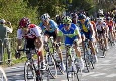Campeonato del mundo de la raza de camino de UCI para los hombres de la élite Foto de archivo