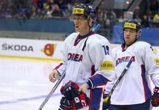 Campeonato 2017 del mundo del hockey sobre hielo Div 1A en Kyiv, Ucrania Foto de archivo