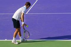 Campeonato 2015 del tenis del mundo Imagen de archivo