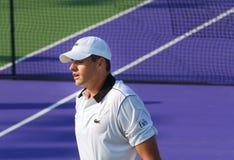 Campeonato 2015 del tenis del mundo Foto de archivo libre de regalías