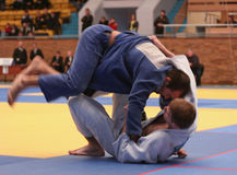 Campeonato do judo Imagens de Stock Royalty Free