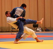 Campeonato do judo Foto de Stock