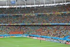 Campeonato do mundo 2014 do Fifa Fotografia de Stock