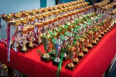 Campeonato do mundo do karaté Crianças que encaixotam, crianças kickboxing opularization dos esportes, estilo de vida saudável Imagens de Stock