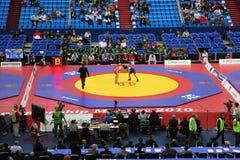 Campeonato do mundo na luta 2010 fotos de stock royalty free