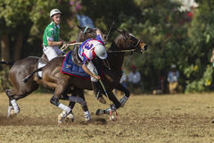 Campeonato do mundo Rider Action de PoloCrosse Foto de Stock Royalty Free