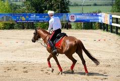 Campeonato do russo na equitação do truque Fotos de Stock Royalty Free