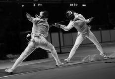 Campeonato en el cercado Fotos de archivo