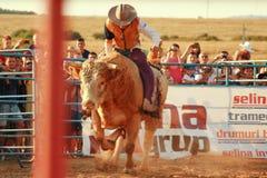 Campeonato europeu do rodeio Foto de Stock