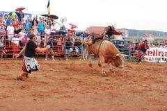 Campeonato europeu do rodeio Fotografia de Stock Royalty Free