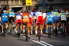 Campeonatos 2008 do mundo da estrada de Uci Foto de Stock