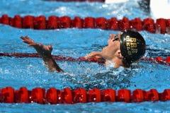 Campeonatos Barcelona 2013 del mundo de Fina Imagen de archivo