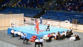 Campeonatos 2013 do encaixotamento, Kiev, Ucrânia, video estoque