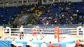 Campeonatos 2013 do encaixotamento, Kiev, Ucrânia, vídeos de arquivo