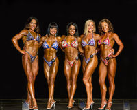 2014 campeonatos do universo de NPC Foto de Stock