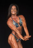 2015 campeonatos do universo de NPC Foto de Stock Royalty Free