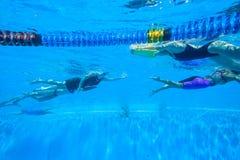 Campeonatos subaquáticos nadadores do aquecimento foto de stock royalty free